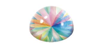 PRISM WIND ROSE