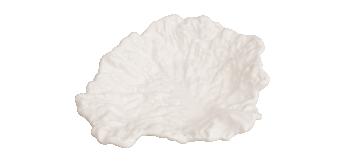 A Alfacinha dos Caracóis