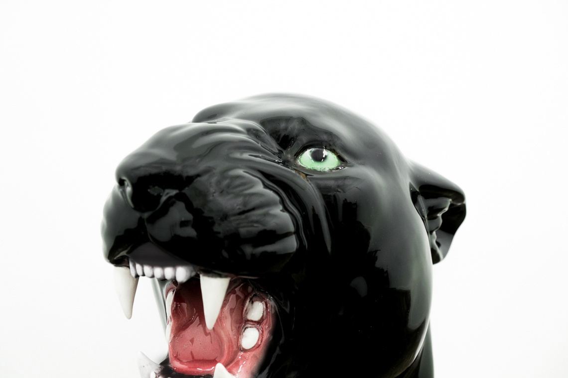 Giant panther